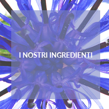 I nostri Ingredienti