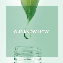 Our know-how