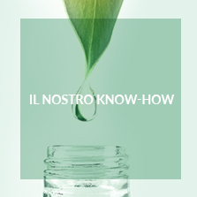 Il nostro know-how